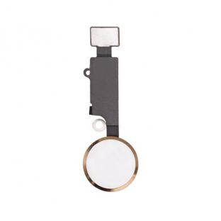 Home Button für iPhone 7 / 8 / Plus / SE2020 mit Flexkabel Gold